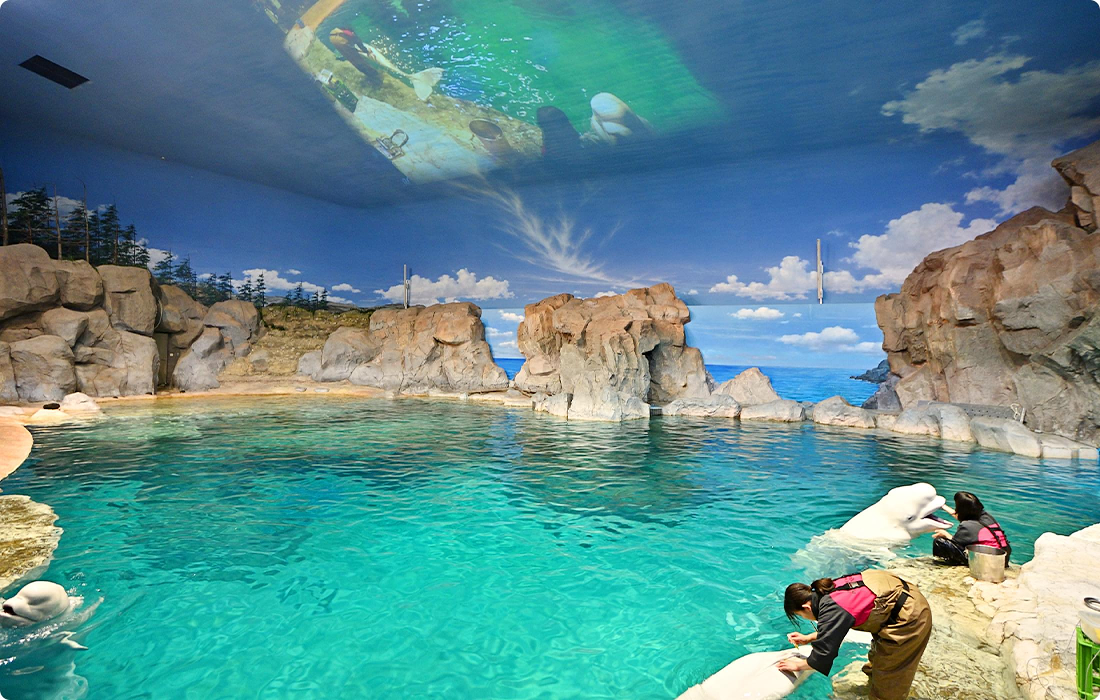 オーロラの海