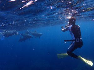 イルカを観察する名古屋港水族館の日比野トレーナー(手前)